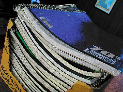 Notebooks by Jae Elle